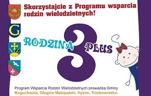 Rodzina 3 plus - program wsparcia rodzin wielodzietnych