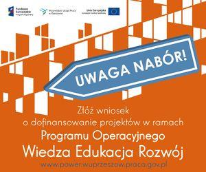 Wsparcie osób młodych pozostających bez pracy na regionalnym rynku pracy – projekty konkursowe