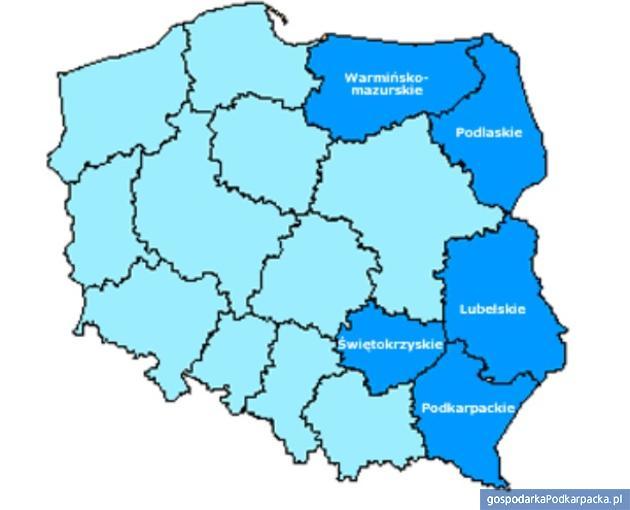 Dotacje na stworzenie produktów sieciowych w Polsce Wschodniej