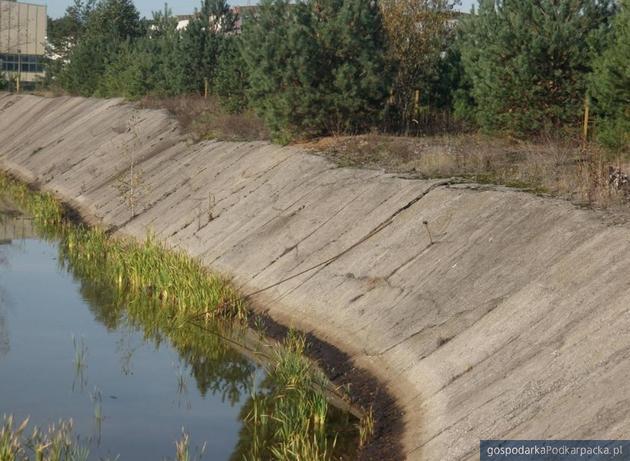 Stawy osoadowe w Stalowej Woli. Fot. Wojewódzki Inspektorat Ochrony Środowiska w Rzeszowie