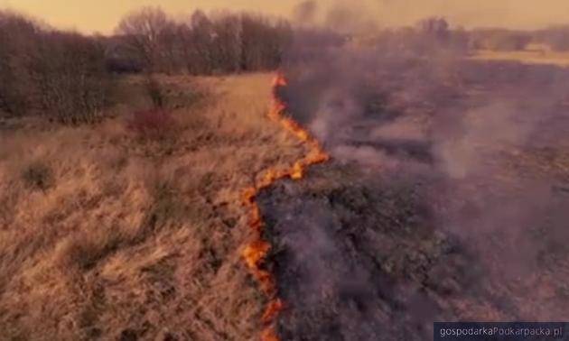 I znów plaga wypalania traw na Podkarpaciu