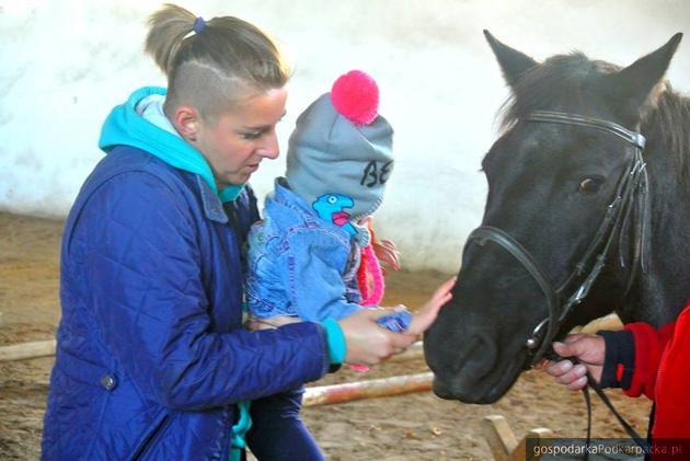Zooterapia na WSIiZ-ie w Rzeszowie