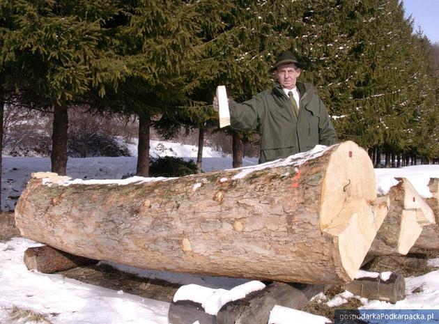Co decyduje o cenie drewna na submisjach?