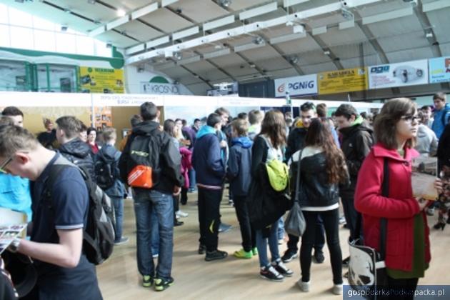 XIV Targi Edukacyjne w Krośnie - 27 marca