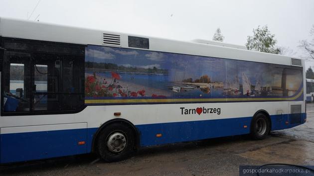 Nad Jezioro Tarnobrzeskie kursował będzie autobus