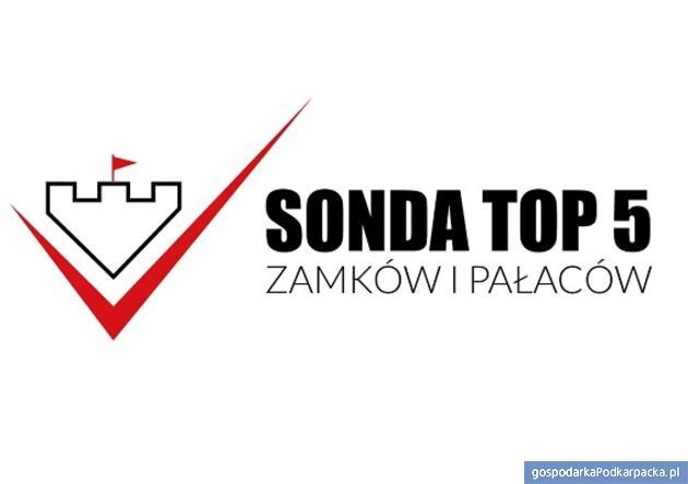 Trwa głosowanie na podkarpackie zamki i pałace