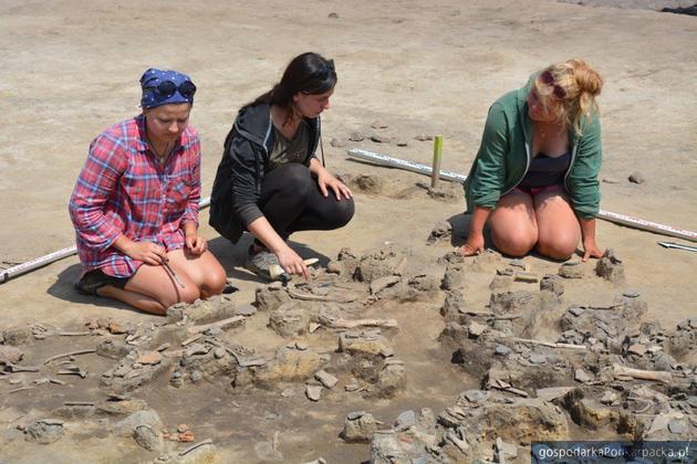 Scytowie w Chotyńcu - odkrycie archeologiczne  potwierdzone