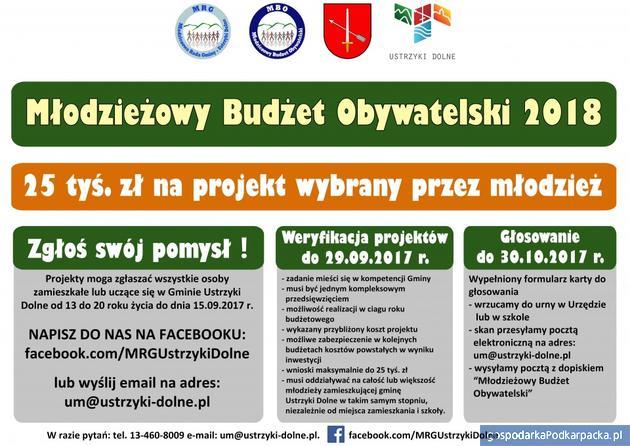 Młodzieżowy Budżet Obywatelski 2018 w Ustrzykach Dolnych