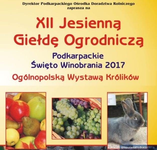 Jesienna Giełda Ogrodnicza 2017 w Boguchwale