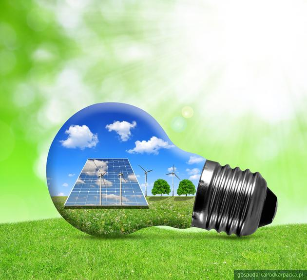 Zielona energia od PGE Obrót