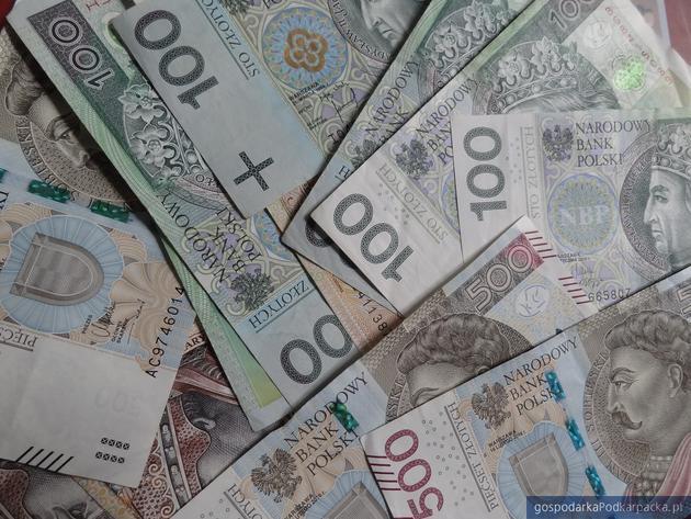 Zatrzymanie podejrzany o wyłudzenia unijnych dopłat na Podkarpaciu