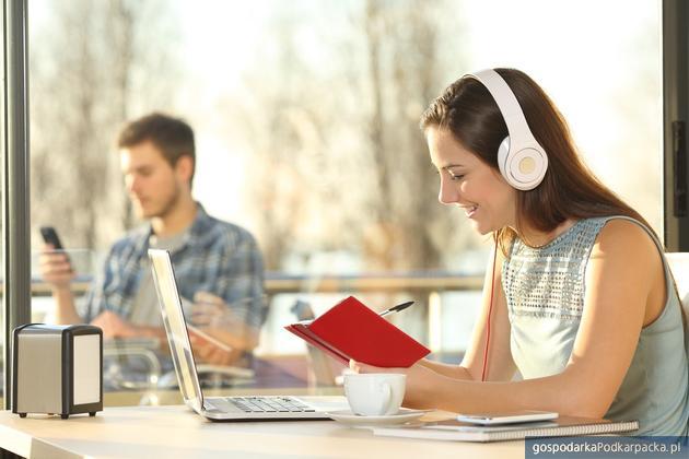 Praca online - najpopularniejsze e-zawody