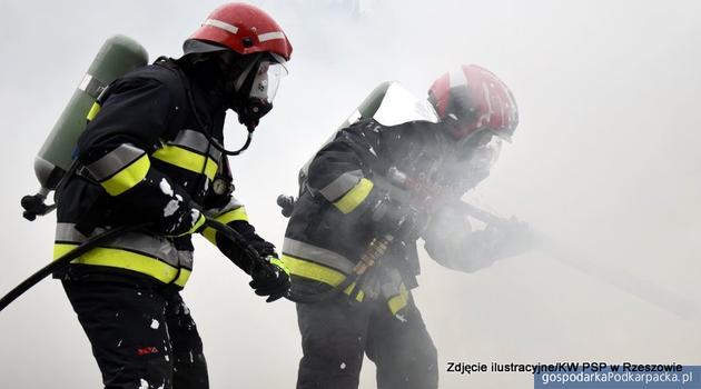 Pożar salonu samochodowego Dębicy