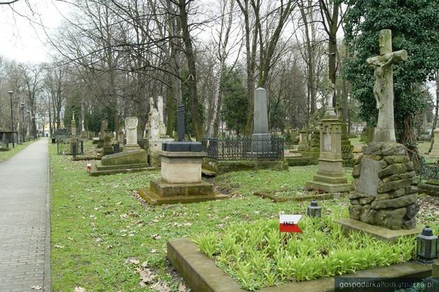 Powstanie nowa dokumentacja starego cmentarza w Rzeszowie