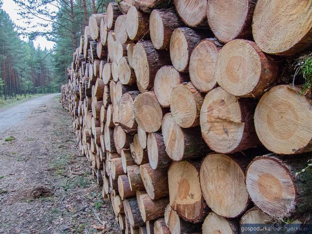 Ile drewna chcą sprzedać w tym roku Lasy Państwowe w Krośnie
