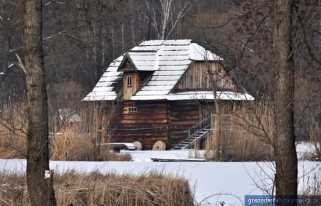 Muzeum w Kolbuszowej ratuje zabytkowe młyny
