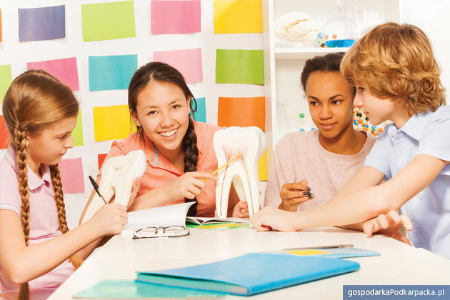 Ponadnarodowa mobilność uczniów – nowy program grantowy