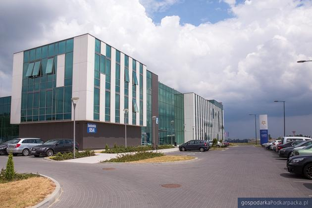 Jakich pracowników szukają girmy z Inkubatora Aeropolis