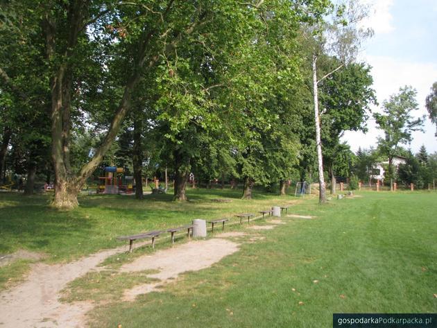 Będzie rewitalizacja parku przy ul Wieniawskiego w Rzeszowie
