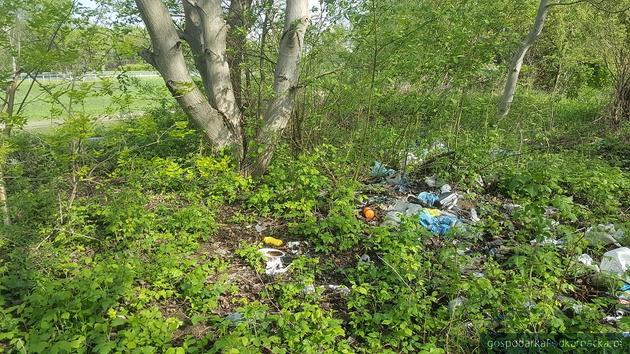 Akcja sprzątania Wisłoka i głosowanie na Rzeszów w konkursie Lechstartera