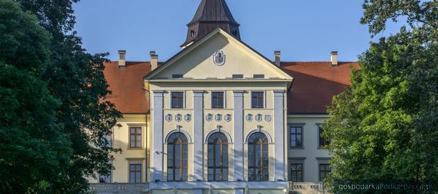 Mały remont pałacu w Dzikowie