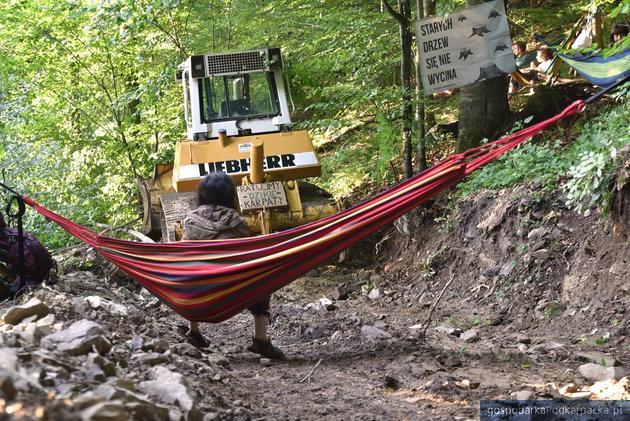 Fot. Inicjatywa Dzikie Karpaty