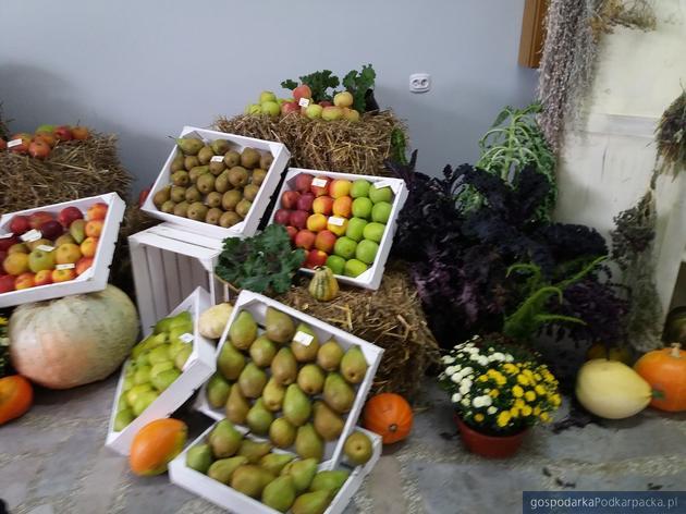 Trwa Jesienna Giełda Ogrodnicza w Boguchwale