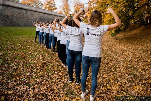 Międzynarodowy Dzień Wolontariusza w WSPiA