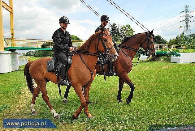 Gdzie Komenda Wojewódzka Policji schowa swoje konie?