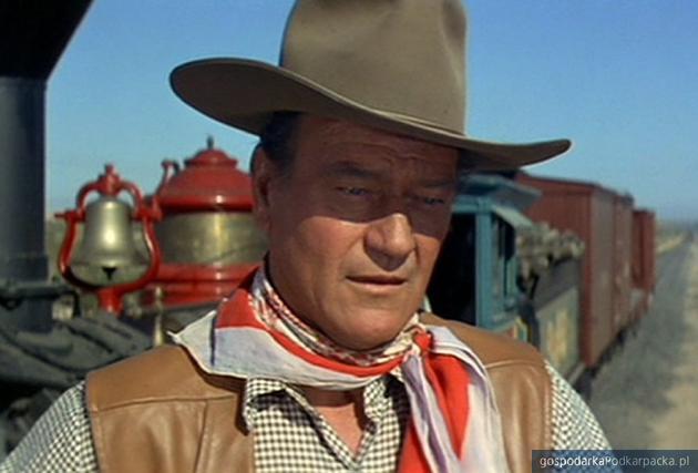 John Wayne. Fot. Pixabay/CC0