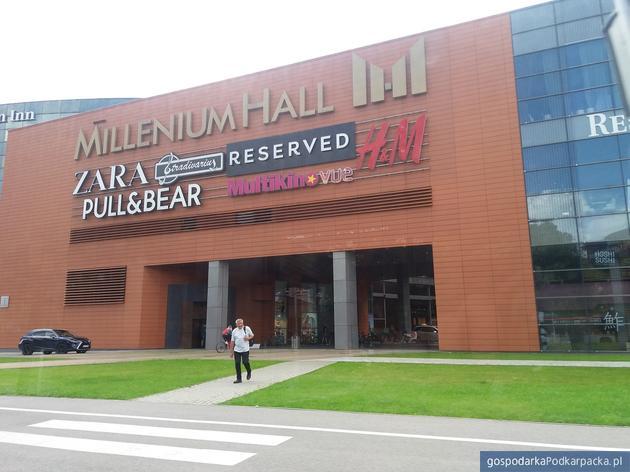Praca w galerii Millenium Hall