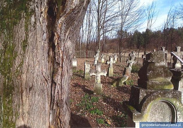 Cmentarz przy zespole cerkiewnym w Radrużu. Widok na stronę południowo-wschodnią. Fot. K.Petrykowska (program konserwatorski)