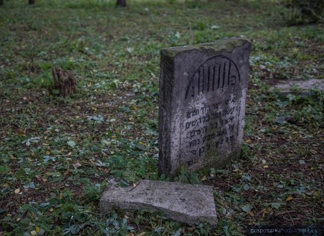 Na cmentarzu żydowskim w Tarnobrzegu. Fot. tarnobrzeg.pl