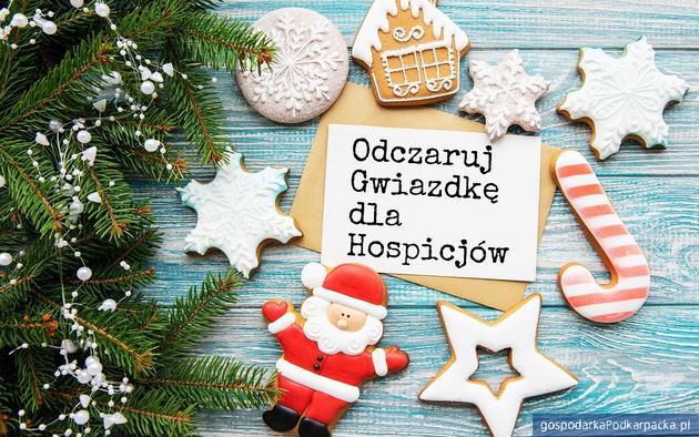 Licytacje internetowe na rzecz Podkarpackiego Hospicjum dla Dzieci w Rzeszowie