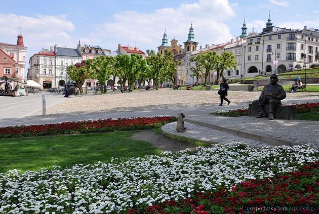 Fot. Agata Czereba (przemysl.pl)
