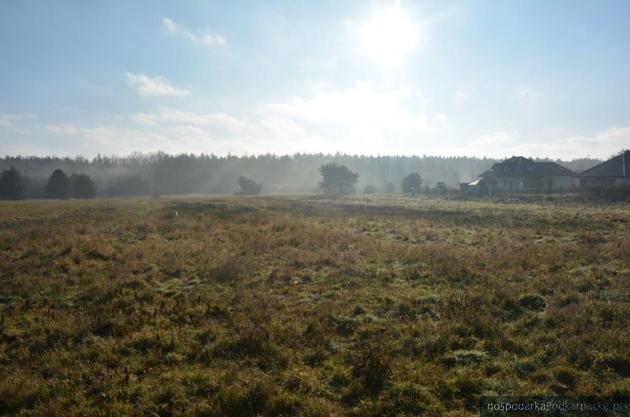 Przetarg na działki na osiedlu Niwa w Głogowie Małopolskim