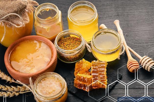 Sekrety produktów pszczelich i apiterapii – informacje oraz bezpłatny wykład