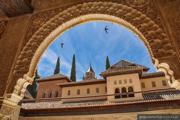 Polskie firmy interesują się m.in. Hiszpanią. Na zdj. Alhambra, Granada. Fot. Pixabay/C00