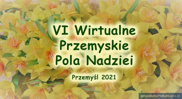 VI Wirtualne Przemyskie Pola Nadziei – 25 kwietnia 2021 r.
