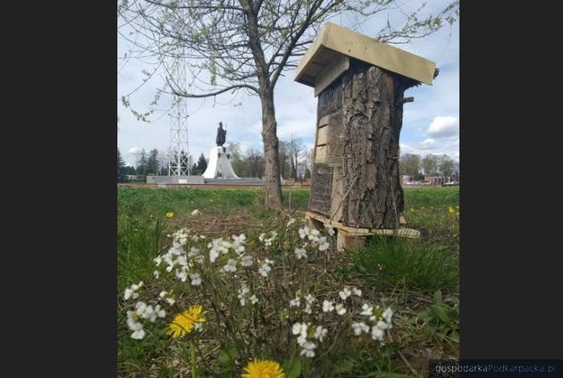 Plac Jana Pawła II w Krośnie. Fot. krosno.pl