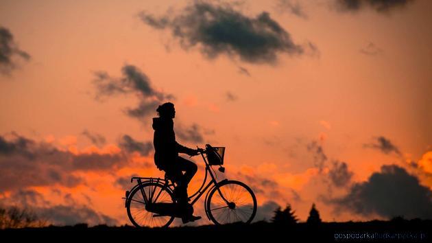 Kolejny fragment ścieżki rowerowej w Przemyślu trafi wkrótce do realizacji