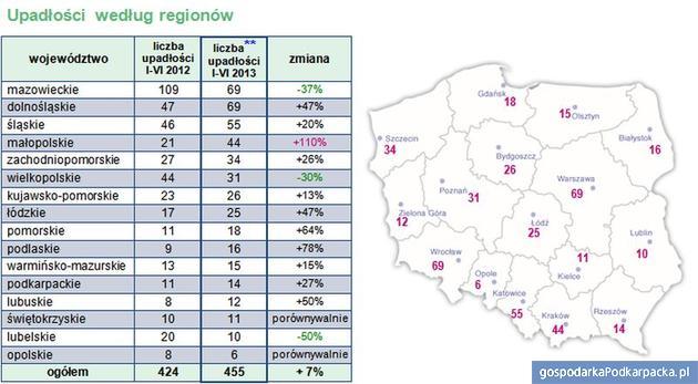 Upadłości wg regionów w I połowie 2013 roku - źródło Coface