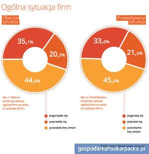 Źródło: Instytut Badań i Analiz, Firmy.net