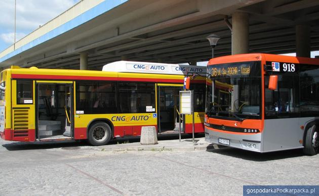 Autobusy rzeszowskiego MPK. Fot. Adam Cyło