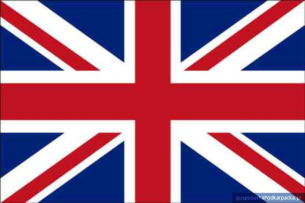 Jak eksportować do Wielkiej Brytanii?