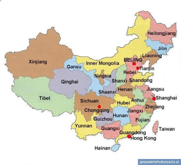 Polskie wędliny, słodycze i makarony popularne w Chinach